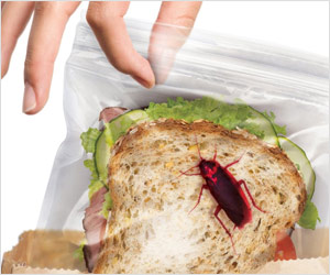 lunch bags with printed bugs