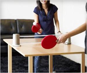 Portable Ping Pong