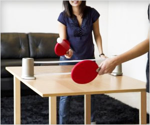 ping pong table game for home and office