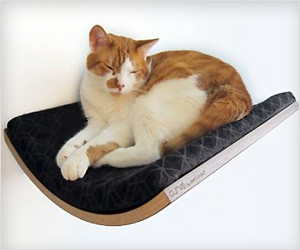 Wall Pet Bed