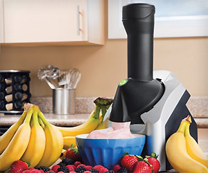 Fruit Ice Cream Maker