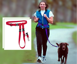 hands free dog leash buddy system for running along