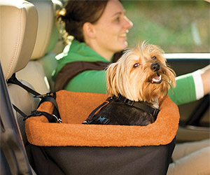 pet dog car seat in high padded seating
