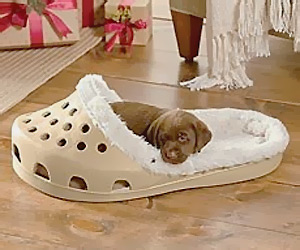 Shoe shape Pet bed for cats & dogs