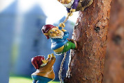 Cute small Gnomes guys climbing tree in garden